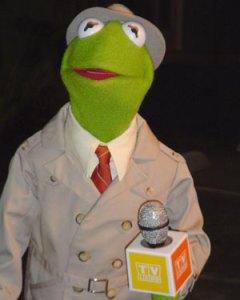 Kermit the Reporter